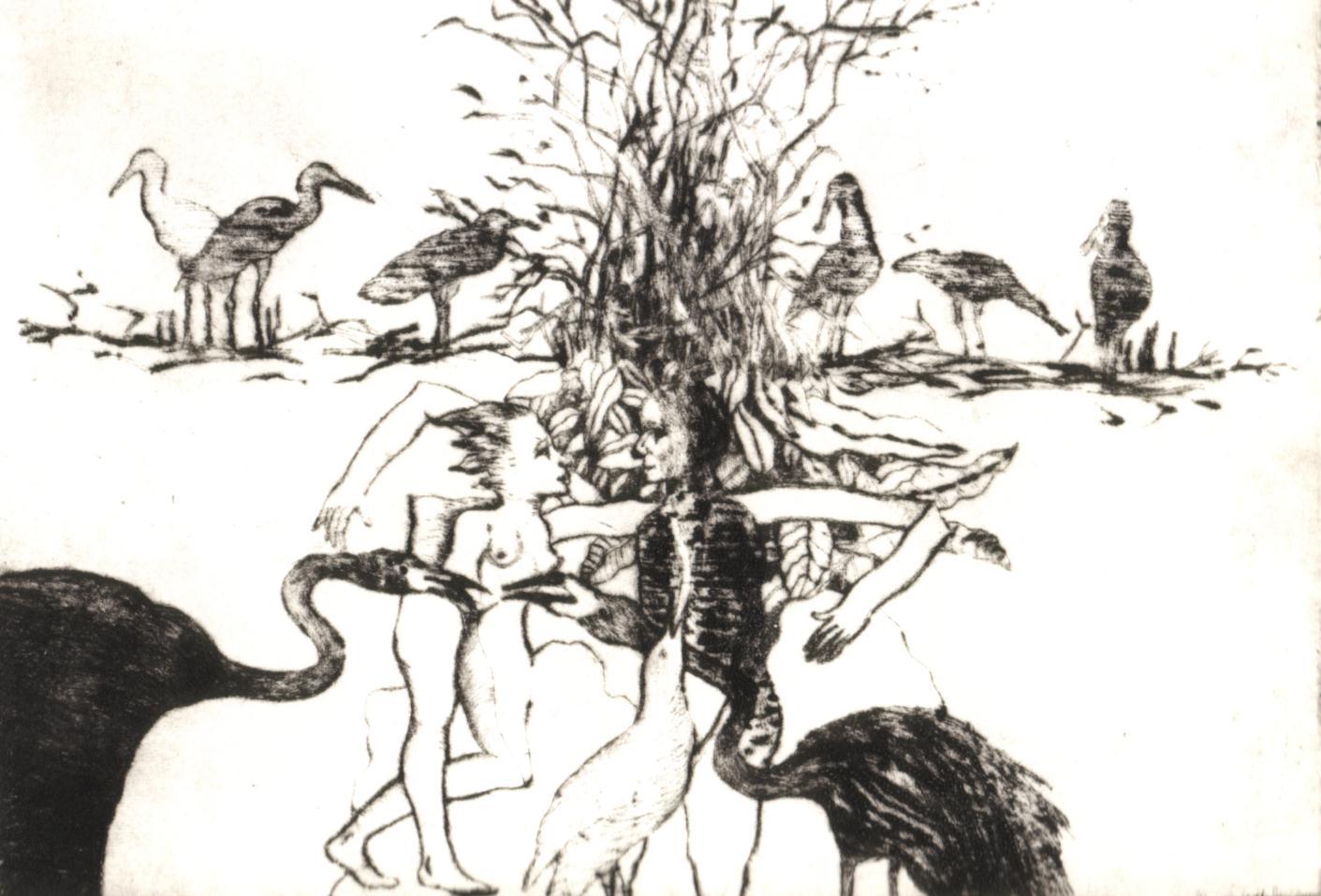 1996 Las aves se juntaron para que ellos se amaran,Grabado, 1